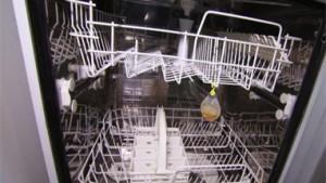 Les compartiments lave-vaisselle